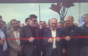 آغاز به کار نخستین بازار خرید و فروش گل زعفران در مشهد