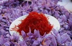 کاهش قیمت طلای سرخ در کشور / ارز صادرات زعفران برگشتی به ایران ندارد
